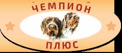 Зоомагазин в Солигорске